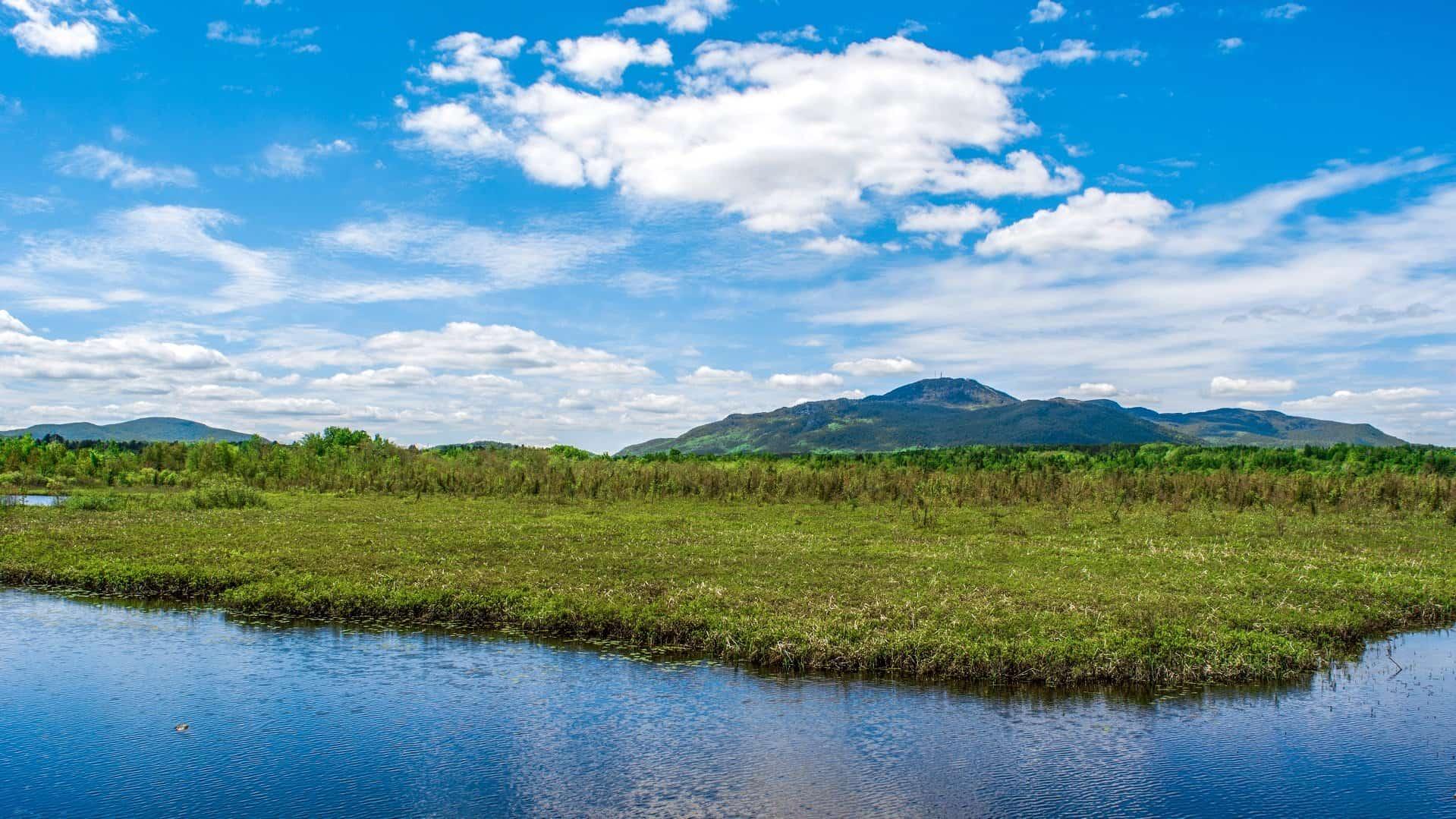 Marais de la Rivière aux Cerises - Magog